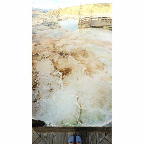 Mammoth hot springs (Yellowstone)